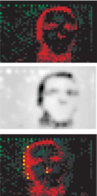 image_27106_largeimagefile Chip accurately mimics retinal functions