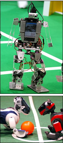 image_34087_largeimagefile It's not the World Cup, it's RoboCup
