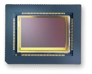 image_61190_largeimagefile Foveon Introduces World's First Full-Color Image Sensor