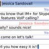 skype_screenshot6