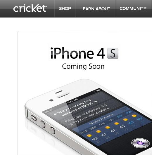 120531-cricket